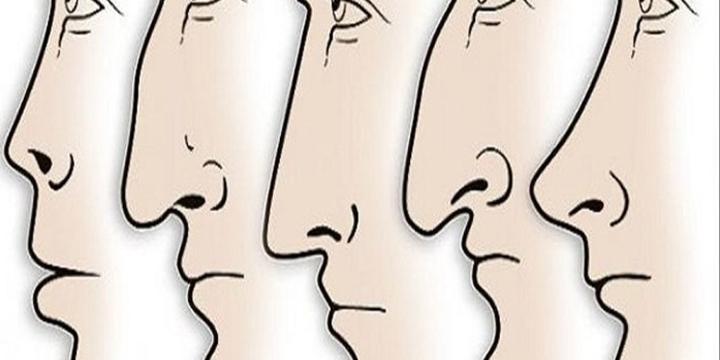 Những điều được tiết lộ thông qua tướng mũi
